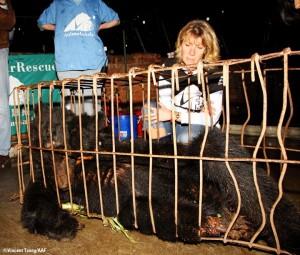 Jill Robinson 1 300x255 LA BATTAGLIA PER GLI ANIMALI DI JILL ROBINSON
